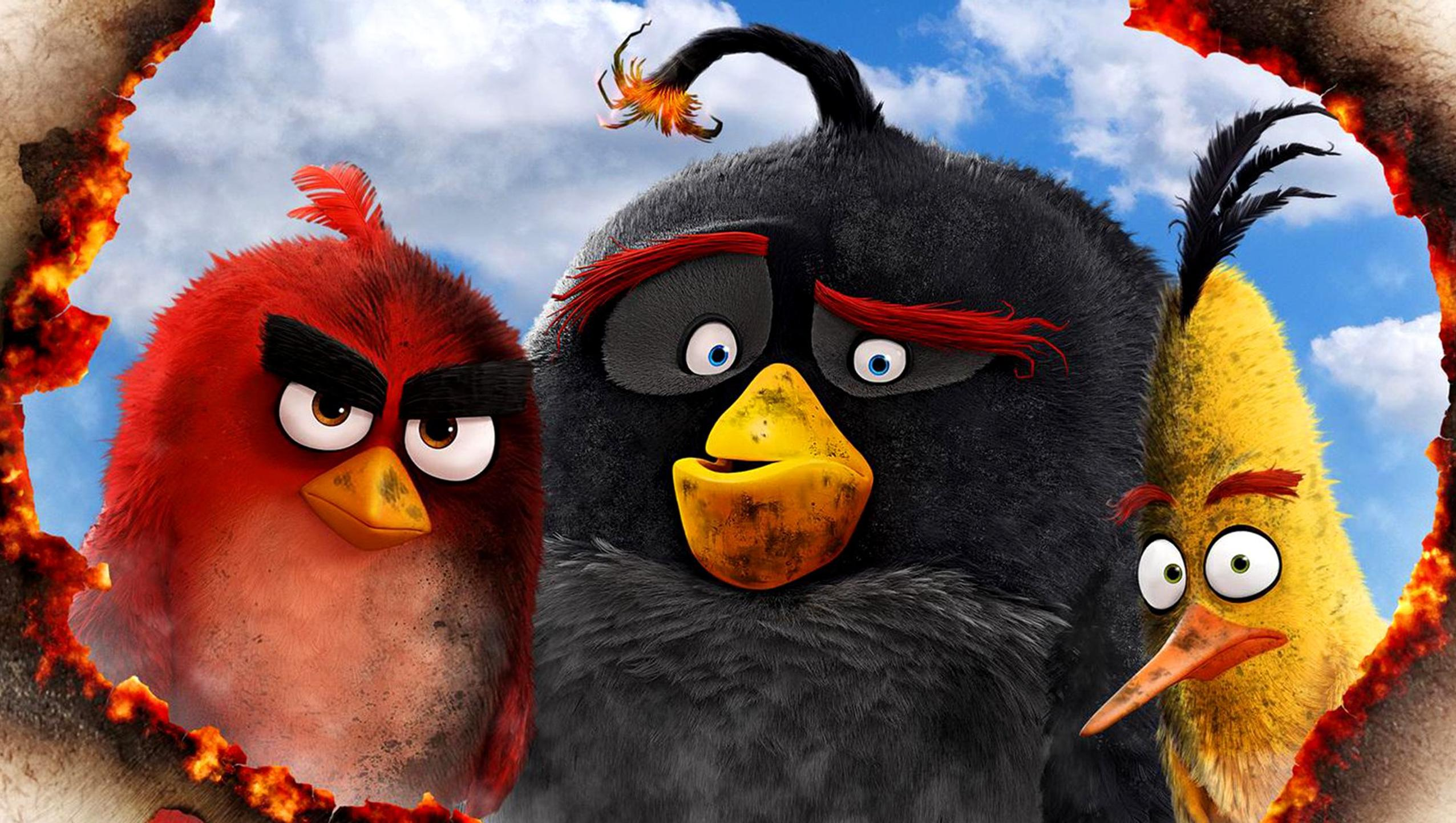 "Wallpaper for ""The Angry Birds Movie"" (2016)"