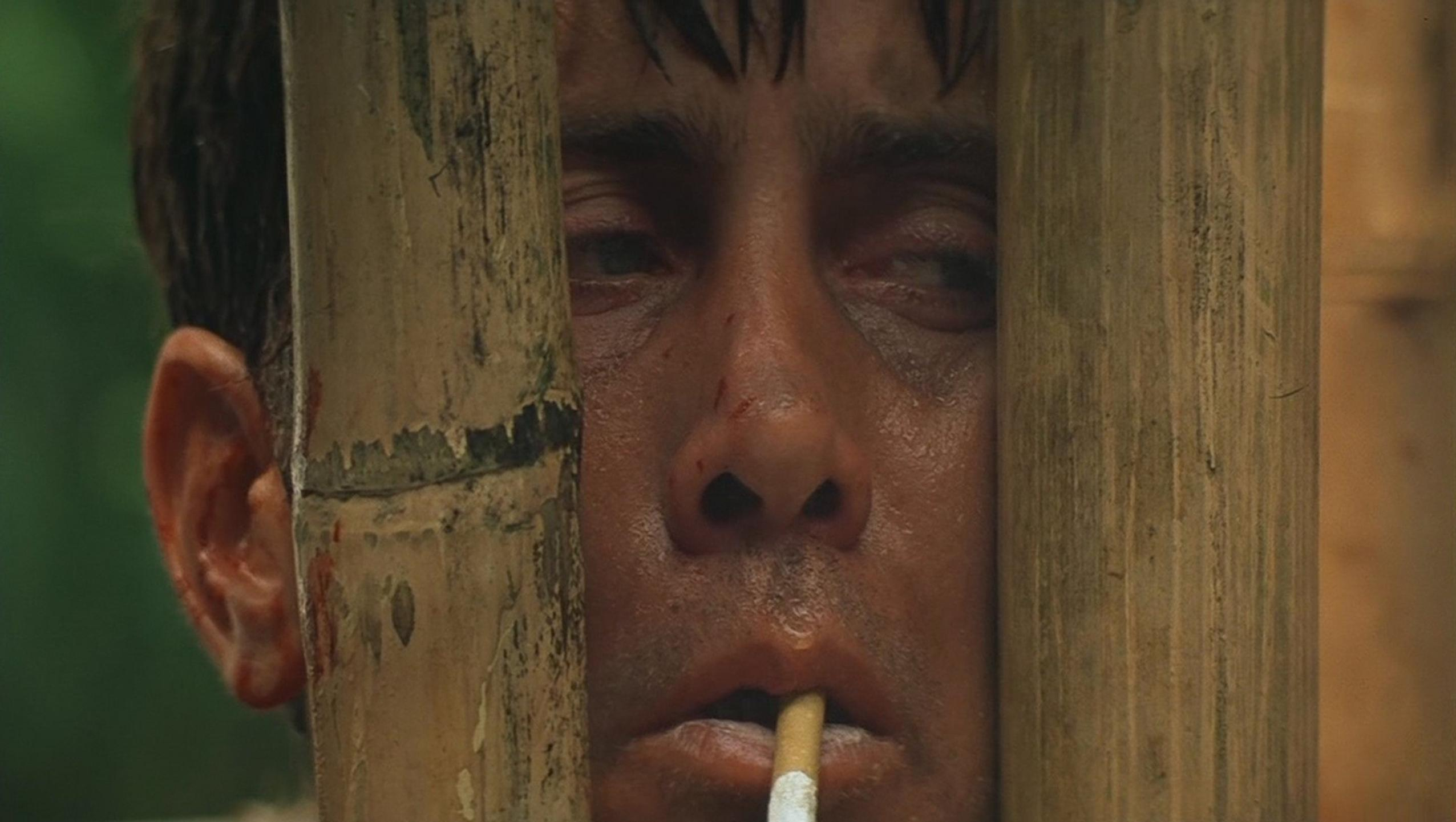"Wallpaper for ""Apocalypse Now"" (1979)"