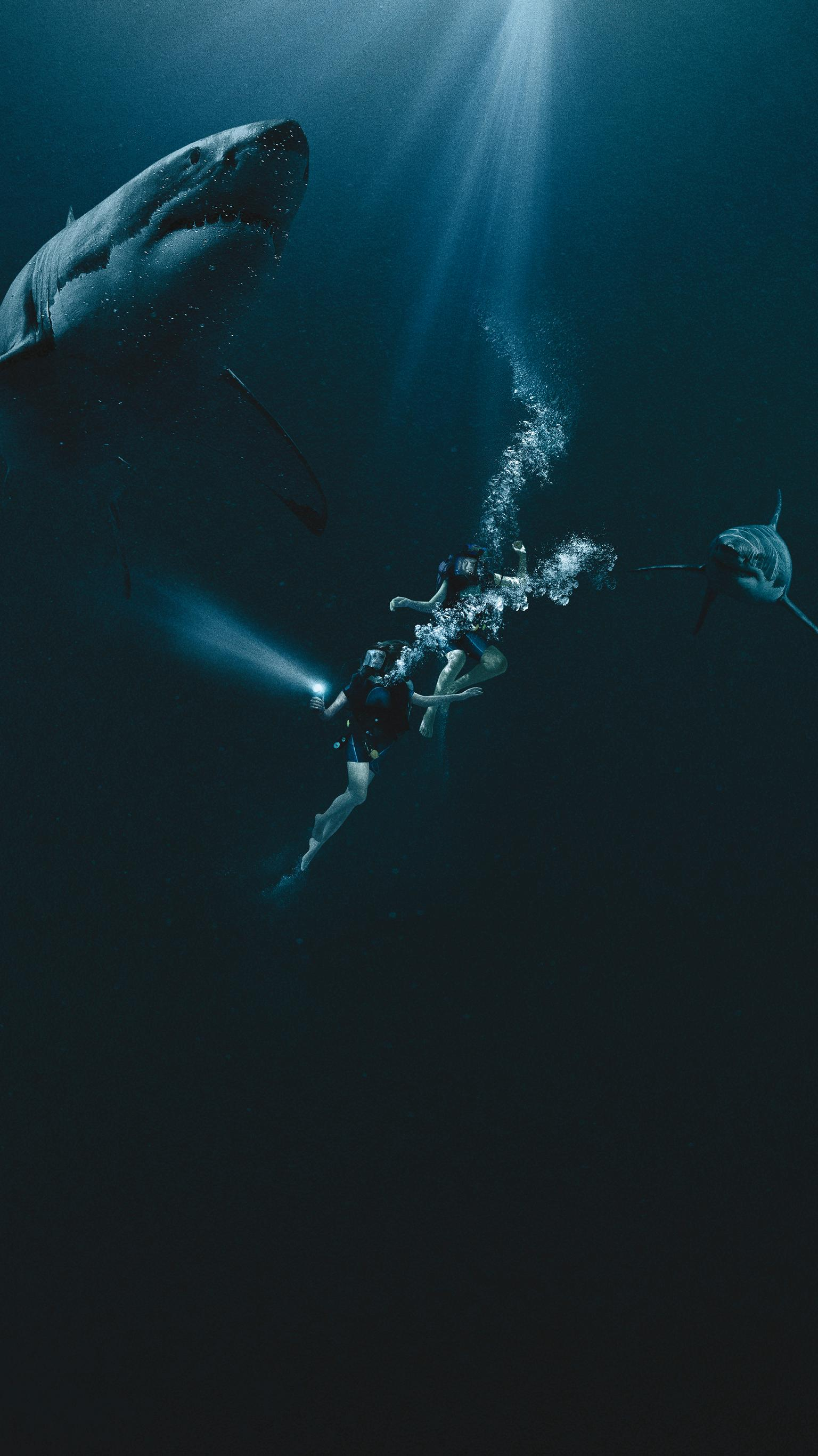 "Wallpaper for ""47 Meters Down"" (2017)"
